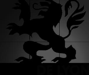 ville-de-lyon-300x255